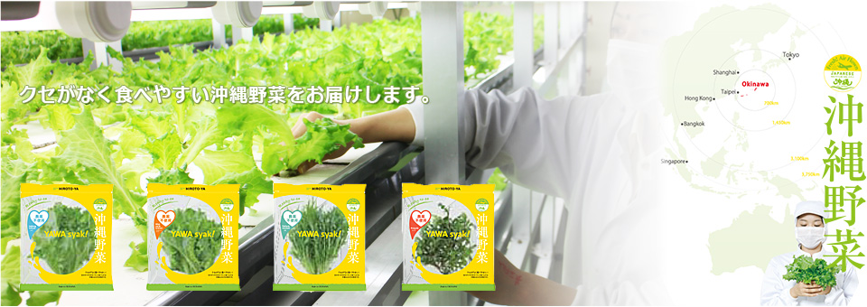 ひろと屋の低カリウム無農薬野菜
